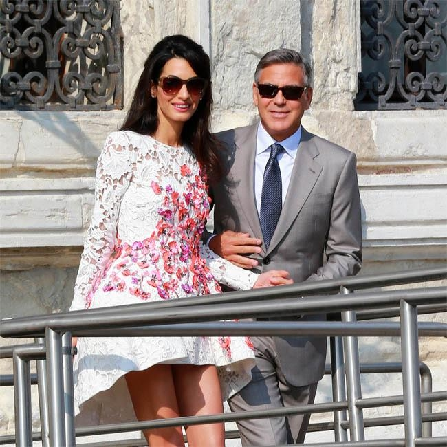 Amal Alamuddin Buys Dogs For George Clooney