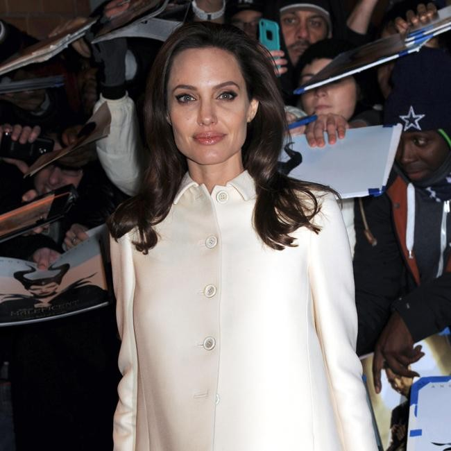 a fans view on angelina jolie