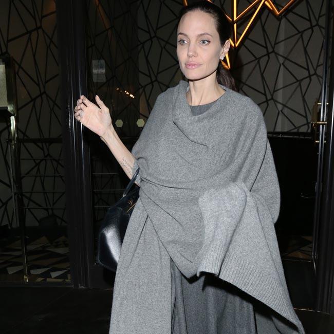 Angelina Jolie set for Mayweather v McGregor fight
