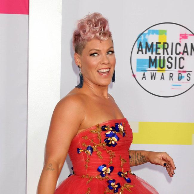 Pink to sing national anthem at this year's Super Bowl