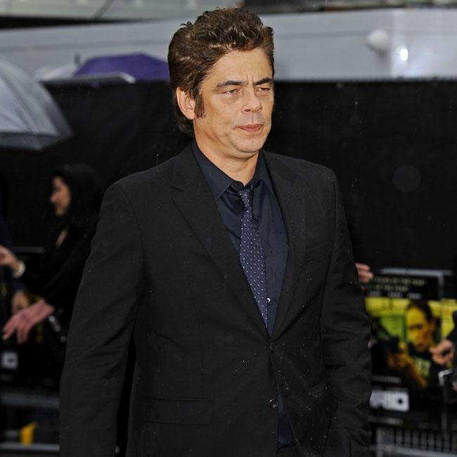 Benicio del Toro joins The Rise and Fall of the Brown Buffalo