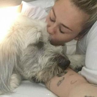 Miley Cyrus posts her pet love on Instagram