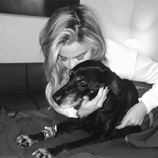 Khloe Kardashian announces passing of her beloved dog