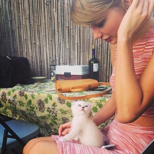 Taylor Swift's world-famous cats