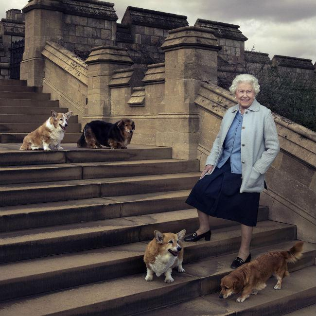 Queen Elizabeth mourns dog