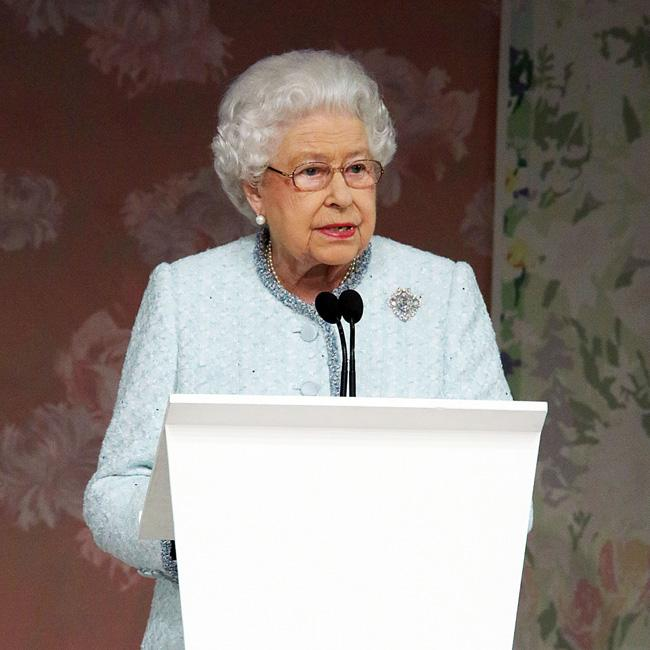 Queen Elizabeth watches her mares give birth on her iPad