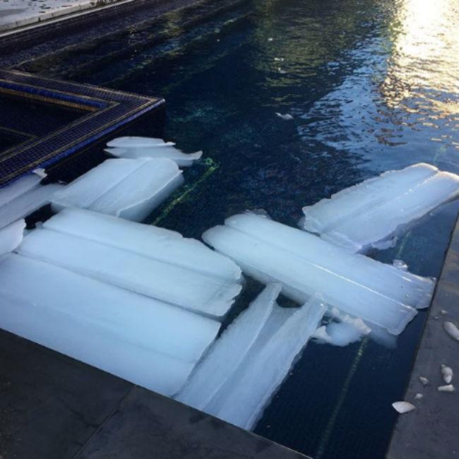 Ozzy Osbourne orders 300lbs of ice during heatwave