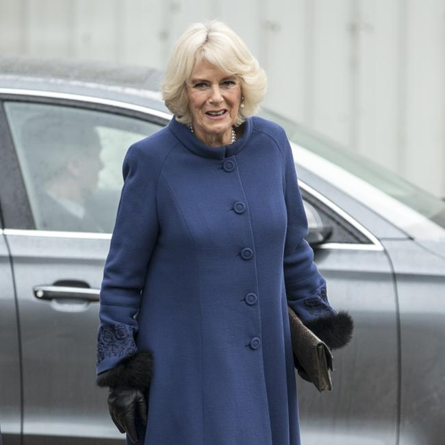 Duchess Camilla to throw opera and ballet party for Charles