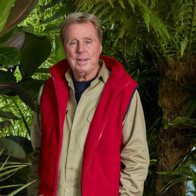 Nick Knowles called I'm A Celeb medics after Harry Redknapp stroke fear