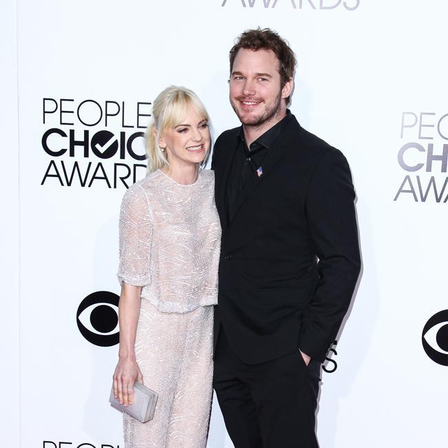 Anna Faris and Chris Pratt 'work hard' to co-parent
