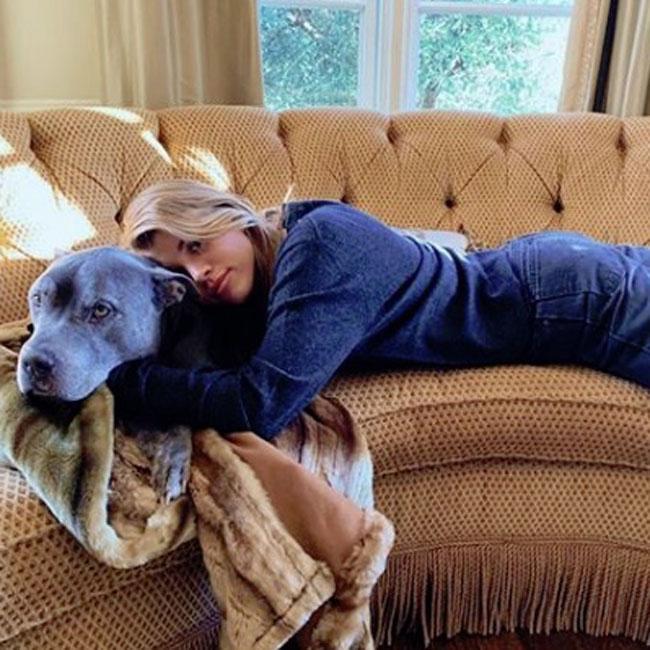 Sofia Richie's beloved dog Jake has died