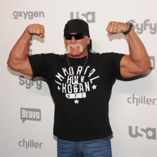 Hulk Hogan: I've learnt from my mistakes