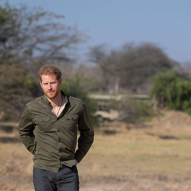 Prince Harry had 'no other option but to step back' from the Royal Family