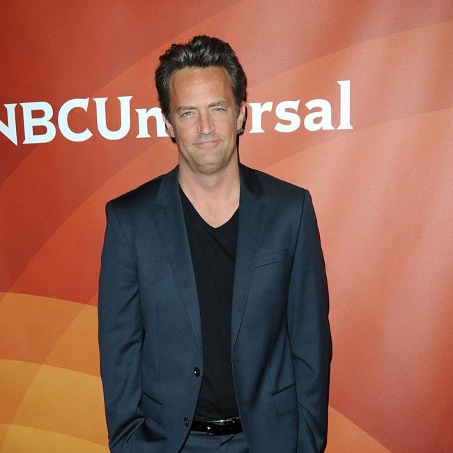 Matthew Perry's pals want him to marry Molly Hurwitz