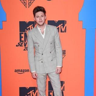 Niall Horan cancels world tour